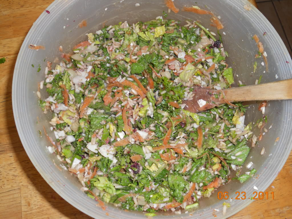 What the birds eat it has chopped up romaine lettucechopped up parsley cooked hard boiled eggs chopped up including shells grated carrots cooked brown rice forumfinder Gallery